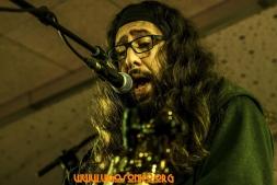 ConcertoSonico_Novembro_2015_SergioWors003